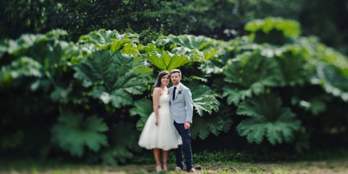Summer Wedding at Ballyvolane House | A+G | Wedding Photography