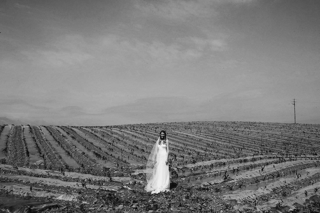 millhouse-wedding-photographer_0121